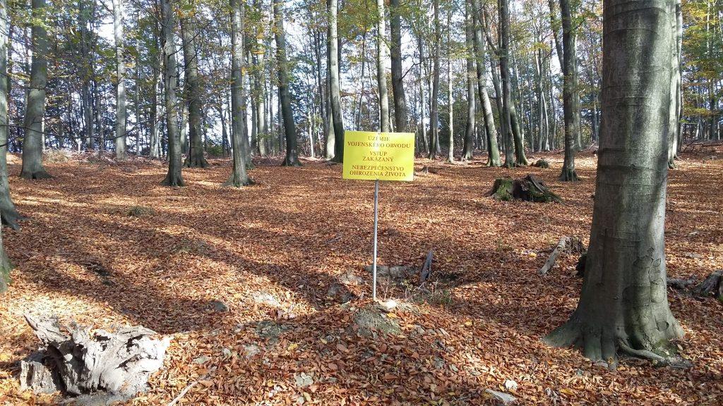 Žltá TZ vedúca na Skalu je hranicou vojenských lesov.