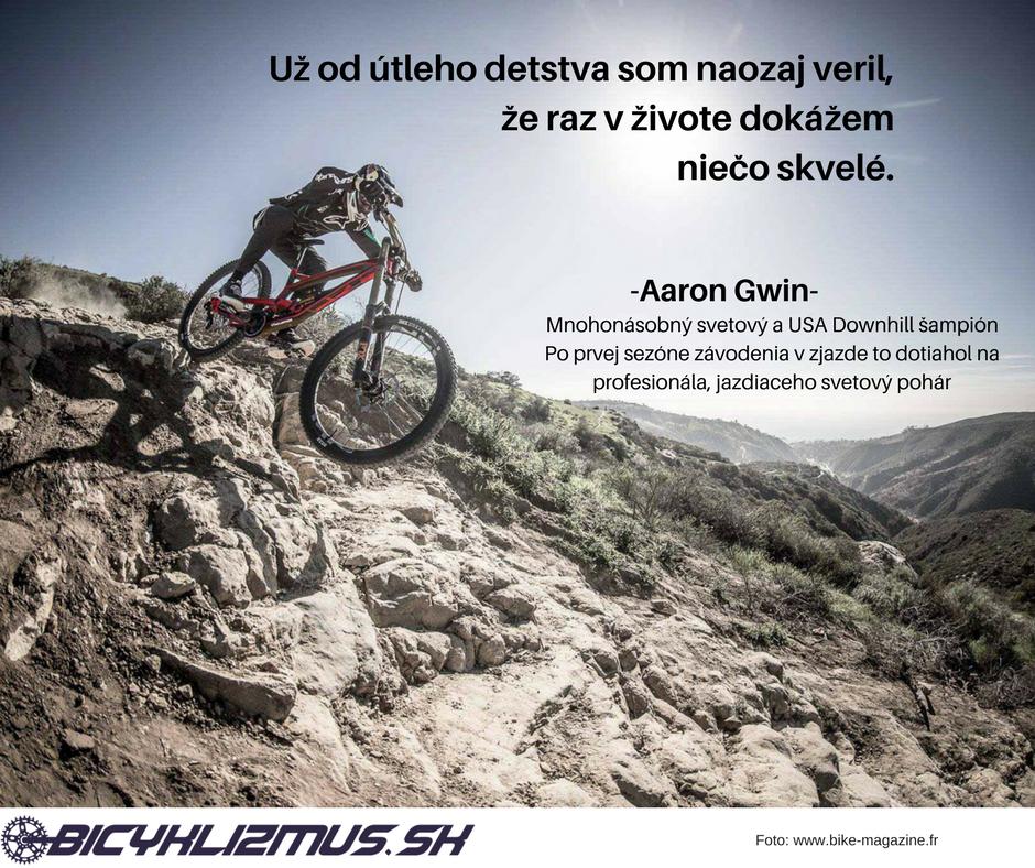 Aaron Gwin - bicyklizmus.sk